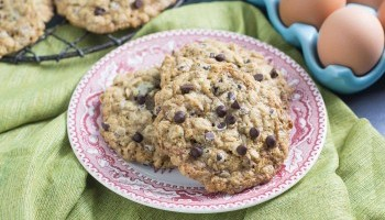 Low FODMAP Chocolate Chip Oatmeal Cookies